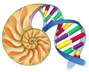 biology1 (1)